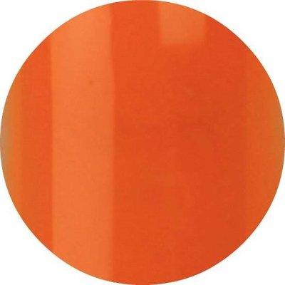 Color Acryl 06 Neon Oranje 5 gram