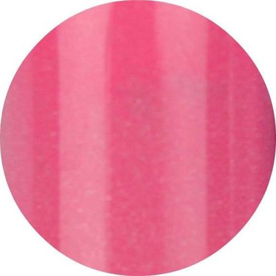 Color Acrylic 31 Pink 4 gram