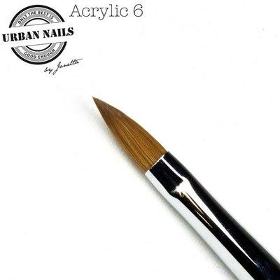 PENSEEL ORDINAIRY LINE ACRYLIC 6