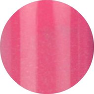 Color Acryl Roze 31